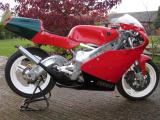 1992 Yamaha TZ250D