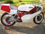 1984 Yamaha TZ250L