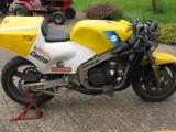 1986 Suzuki RGB 500 XR70 V2