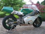1989 Yamaha TZ250 Reverse