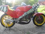 1985 Maxton Rotax